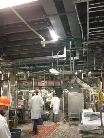 Interior of food service plant with workers in lab coats and plastic masks walking amid the machinery